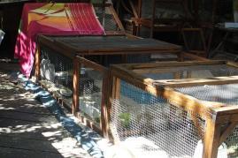 28062015 installation en parcours sur la terrasse 1