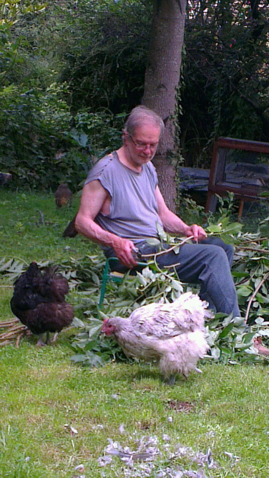 Denis coupe des branches et intéresse les piules