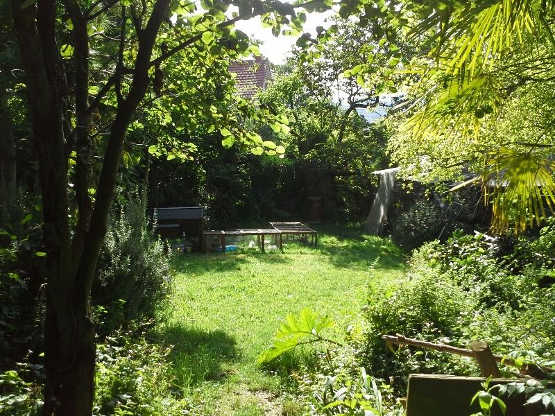 Des poules dans mon jardin en banlieue parisienne for Dans keff